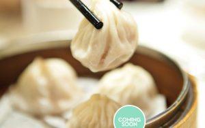 Dumpling Mama